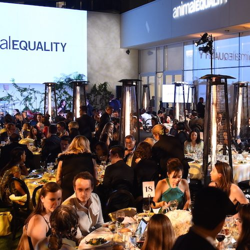 attends the Animal Equality Inspiring Global Action Gala at The Beverly Hilton Hotel on October 27, 2018 in Beverly Hills, California.