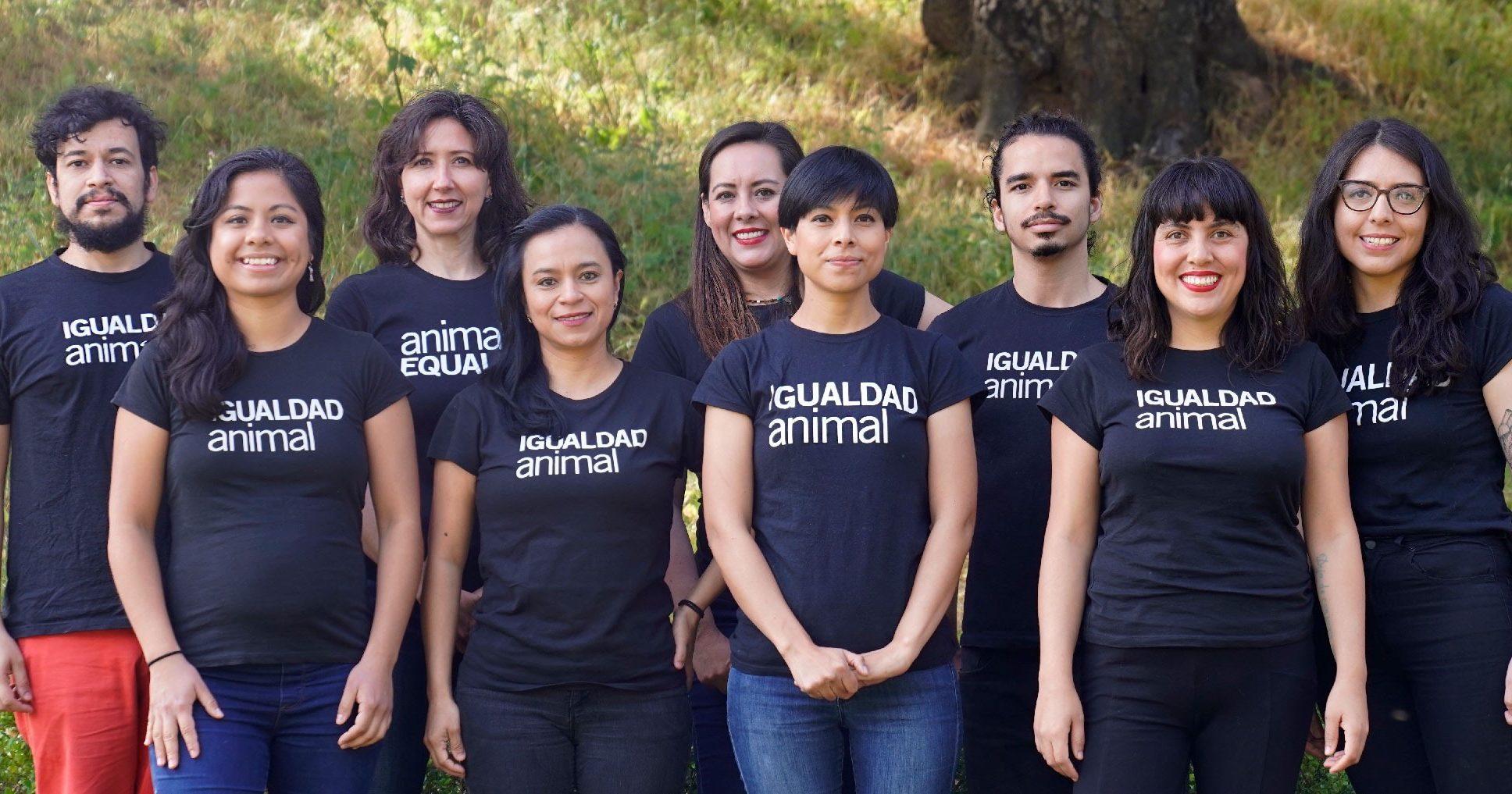 Quienes Somos   Igualdad Animal México