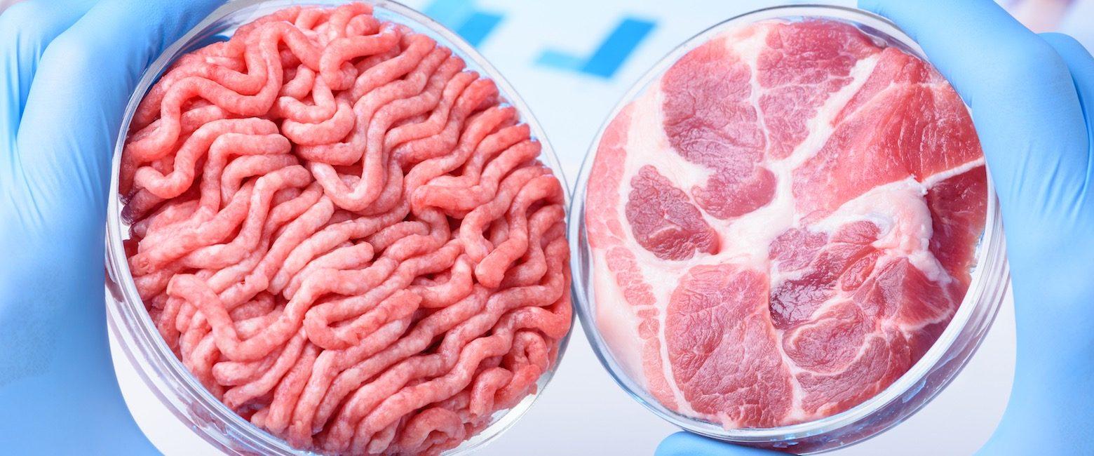 Carne limpia