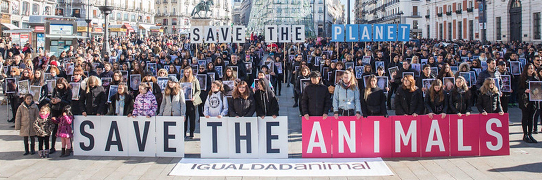Día de los derechos animales