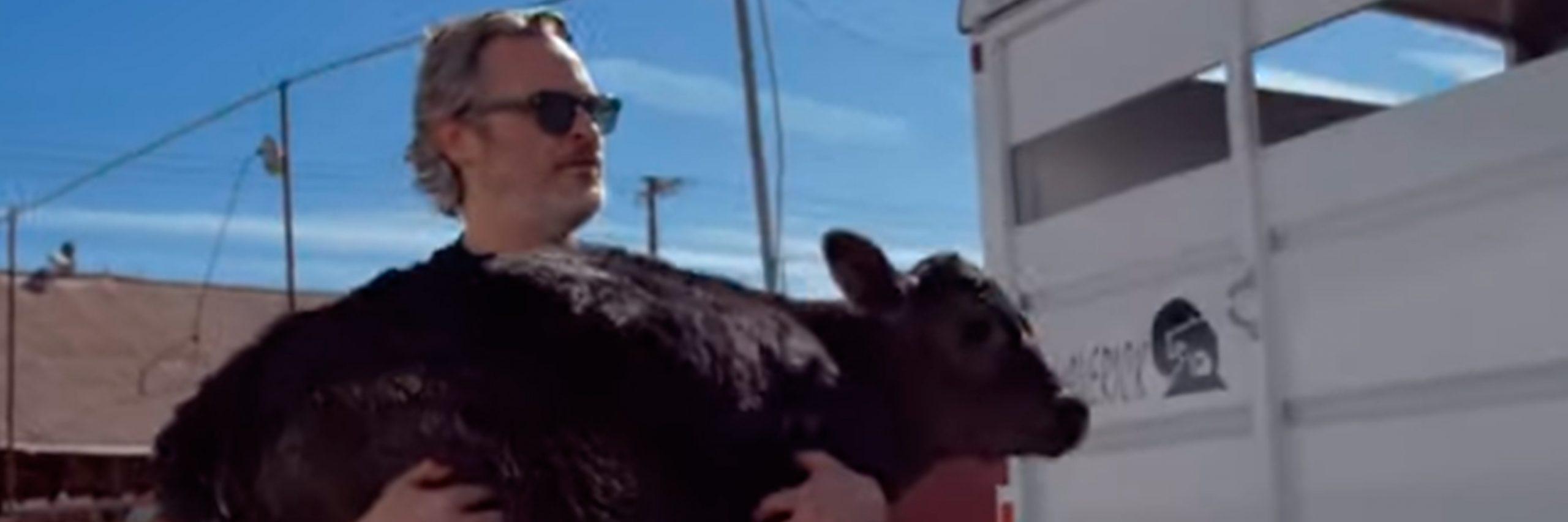 Joaquin Phoenix rescata vaca